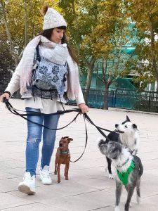 portear con perro